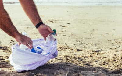 Join Our Beach and Park Cleanup in La Habra This July